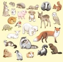 Tiermuster